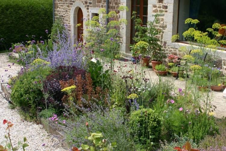 original selección plantas jardín