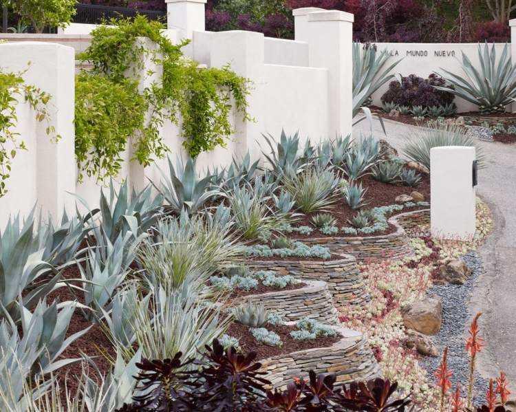 originales diseños plantas jardines modernos