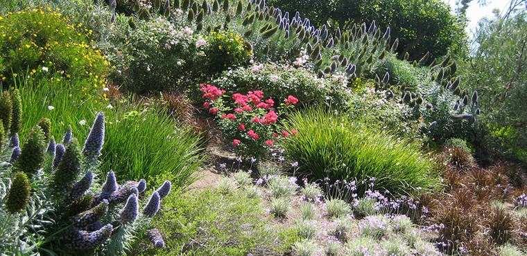 paisajismo flores primavera jardines plantas ideas