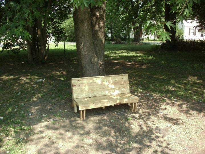 palet creatividad bancos madera arboles