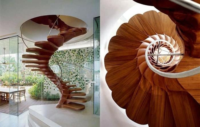 petalos imagenes flores salas espirales