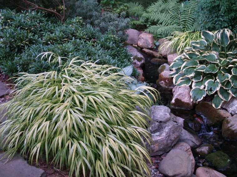 piedras jardin plantas hierba montana japonesa ideas