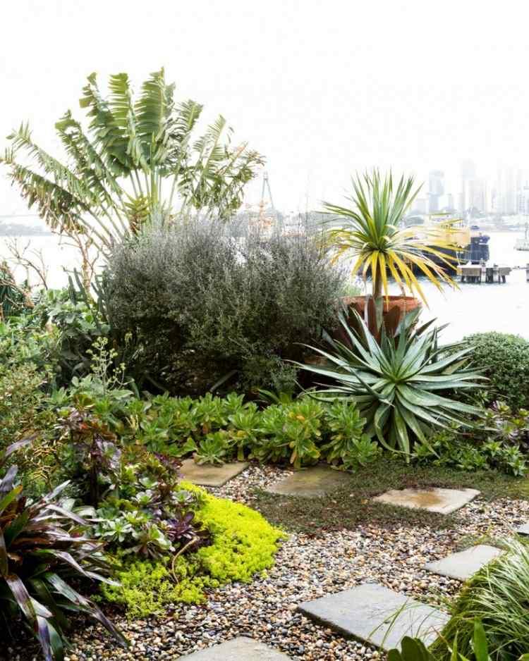 plantas rocas camino jardín baldosas
