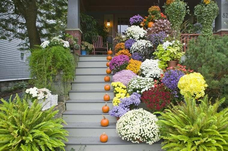 porches jardín opciones flores macetas preciosas ideas