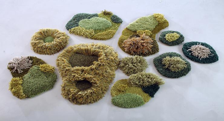 parcelas trozos verdes naturales