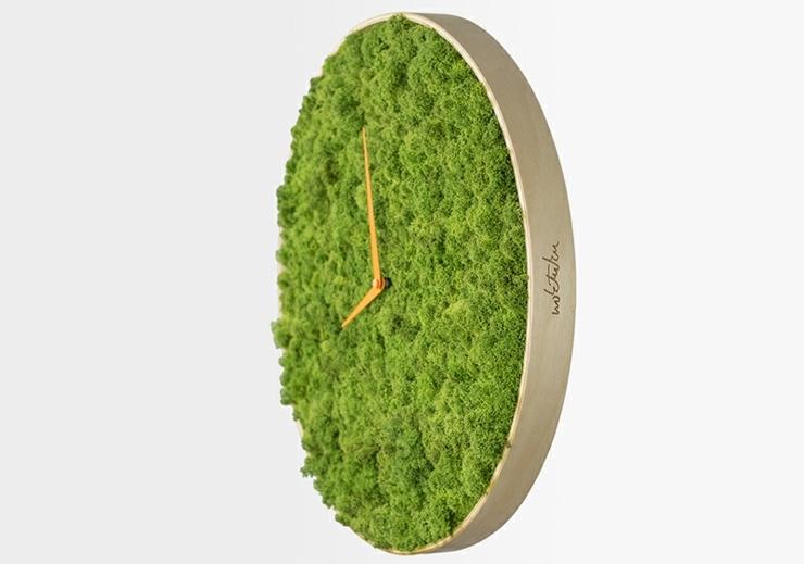 reloj diseño esfera musgos