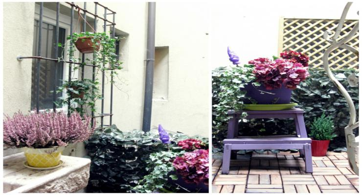 bonita decoración terraza balcones