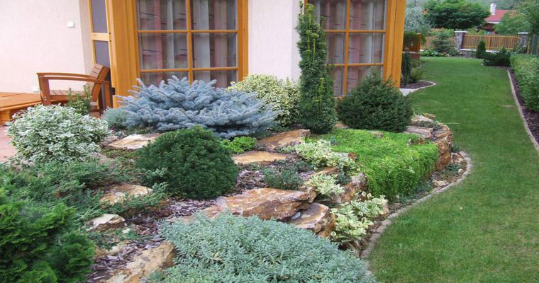 alpineum diseño rocas jardin