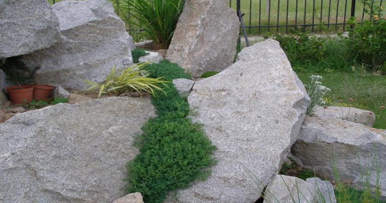 alpineum jardín rocas grandes