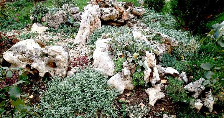 original diseño pasiaje jardín