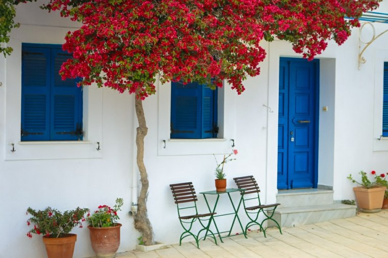 arbol plantas rojas sillas plegables ideas