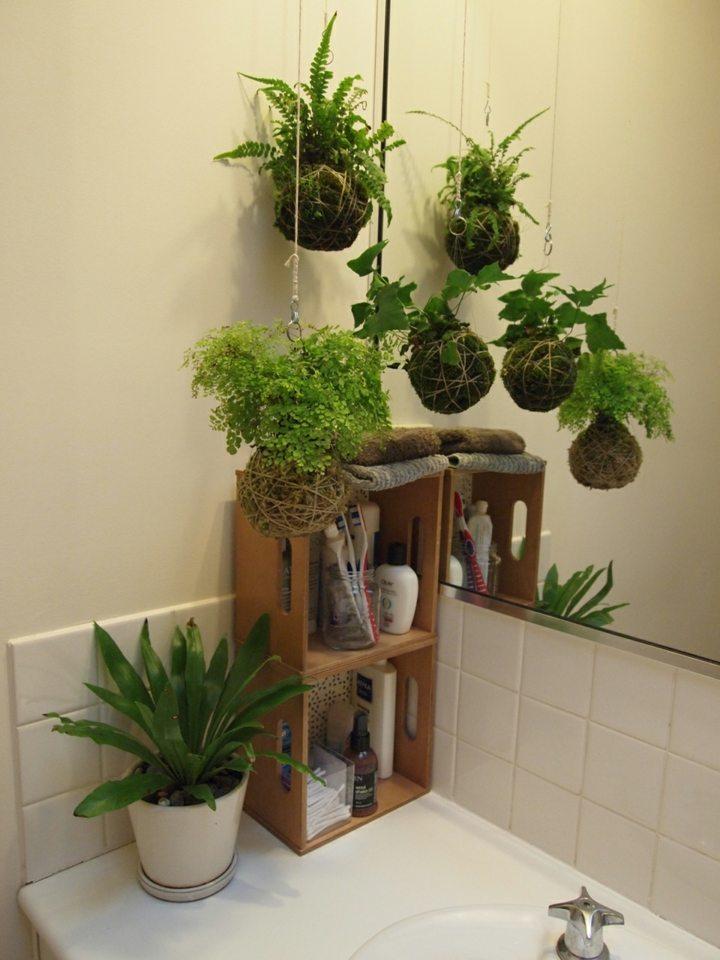baños decorado estilo verdes salas imagenes