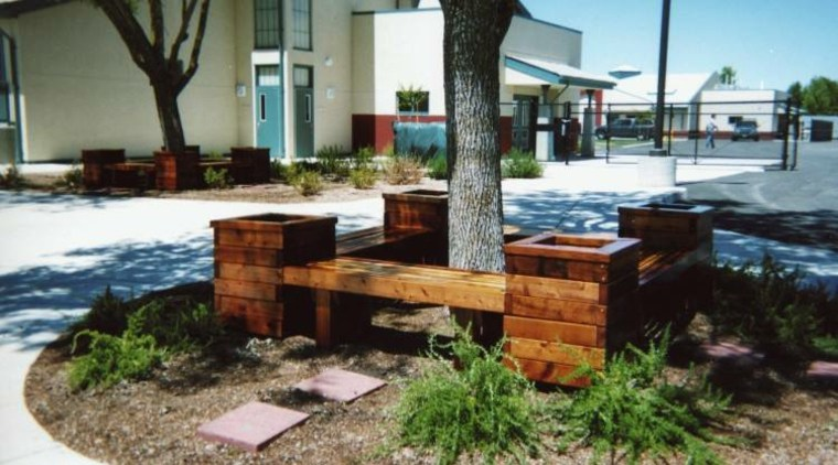 bancos diseño moderno madera árboles