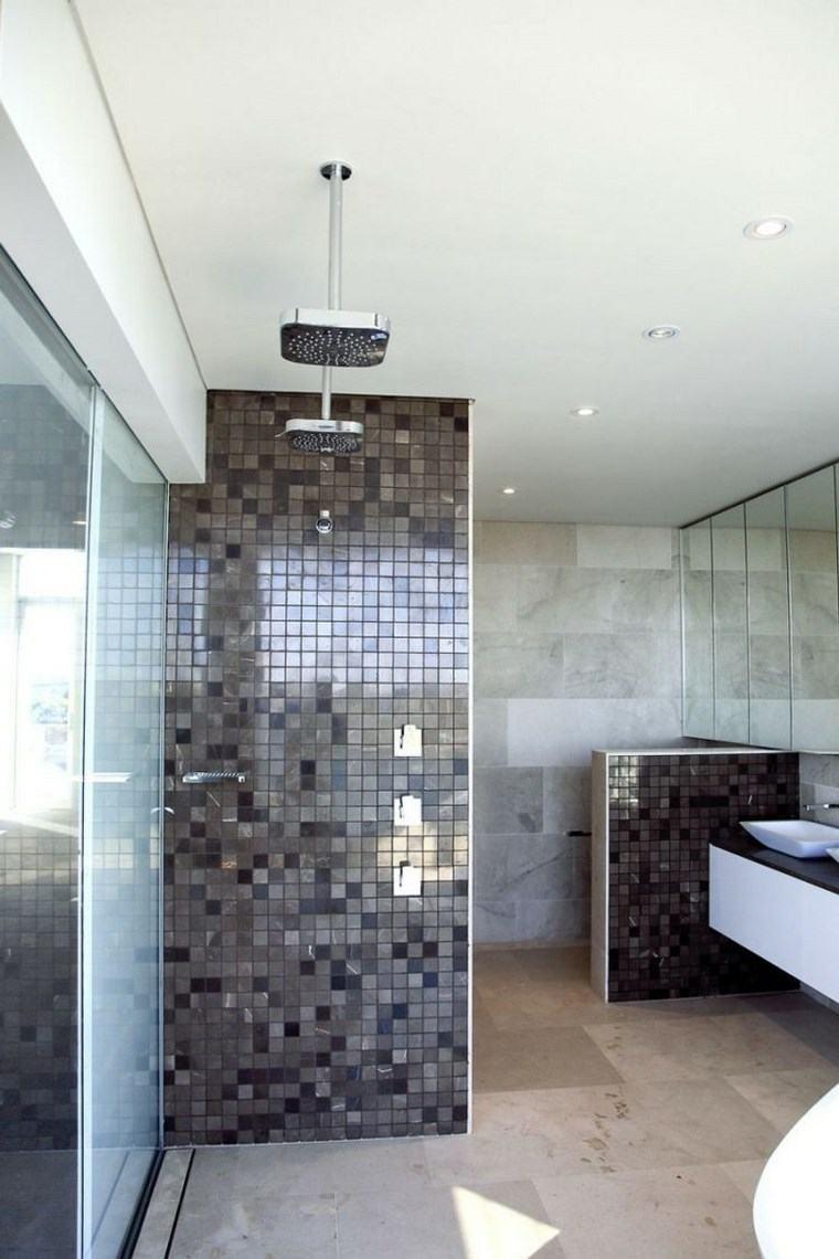 bano moderno opciones decoracion ducha ideas