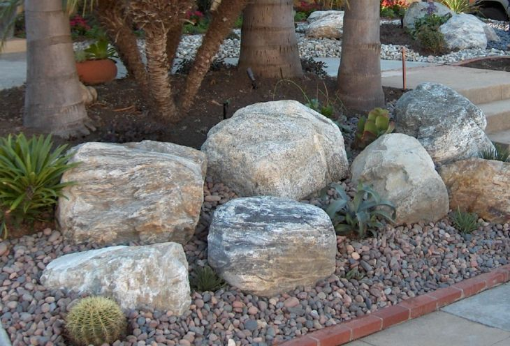 bases rocas efectos muestras cactus