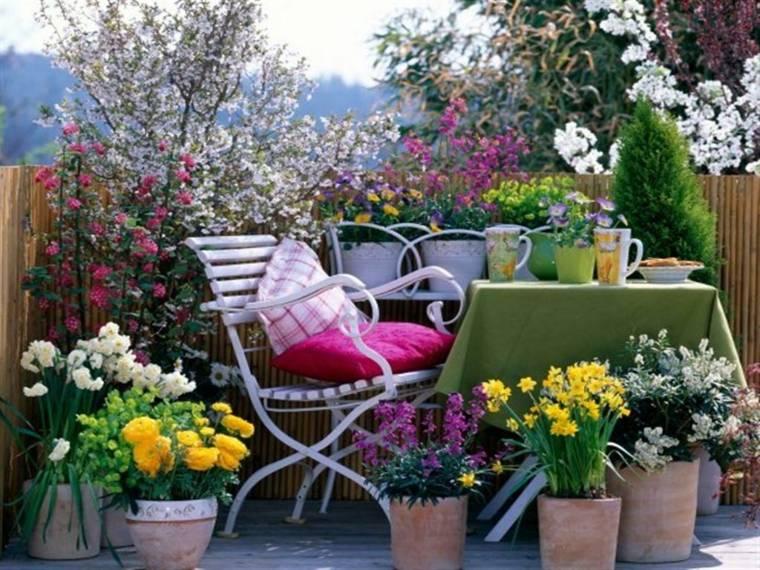 pretty decoration terrace flowers