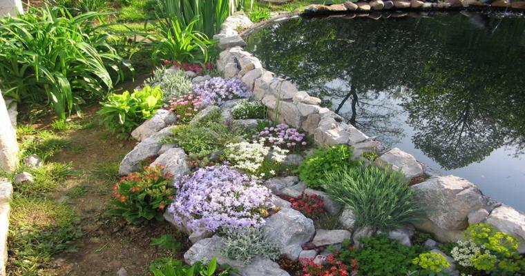 bonita decoración borde estanque