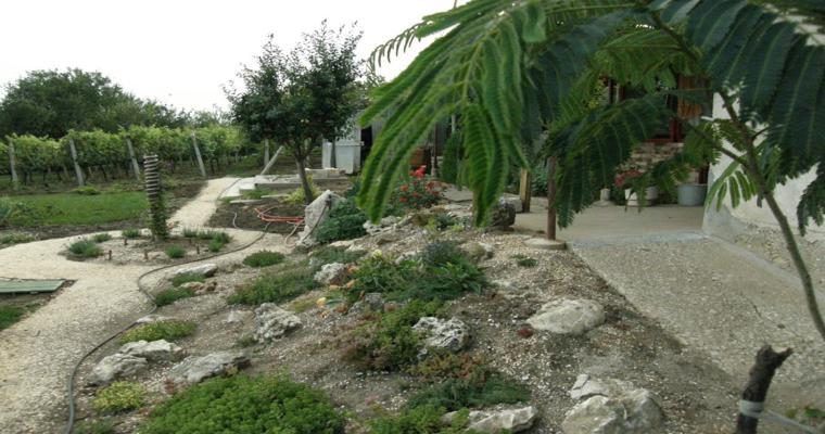 bonita decoración jardín rocallas