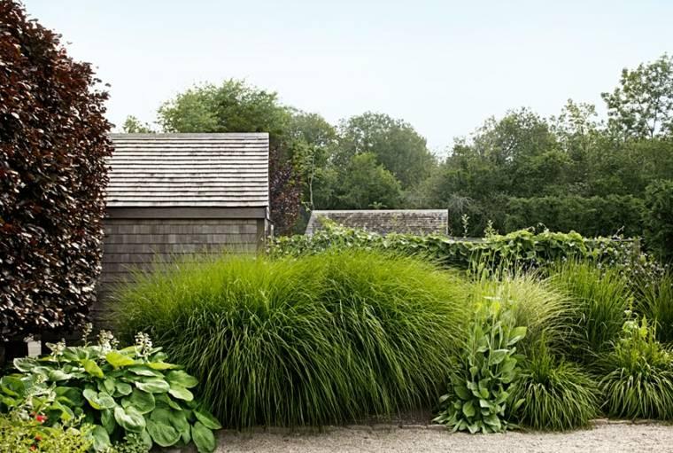 bonitas plantas deco jardines modernos