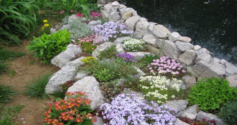 bonitas flores deco rocallas