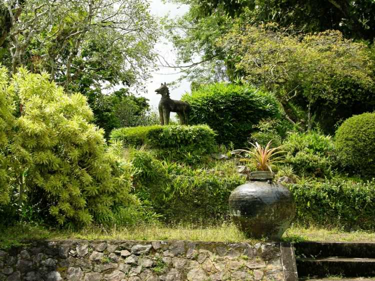 bonito diseño jardin plantas
