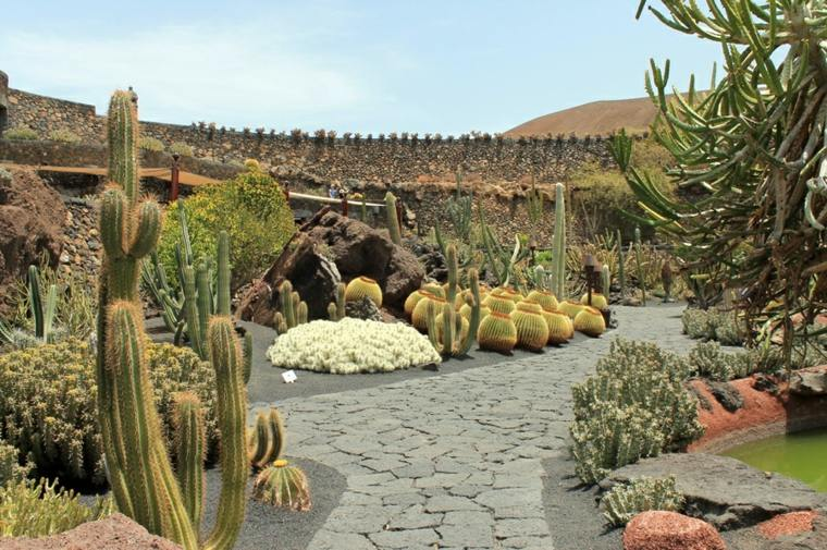bonito diseño deco jardines cactus