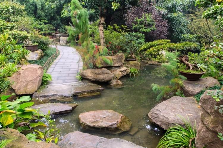 bonito jardin camino estanque agua
