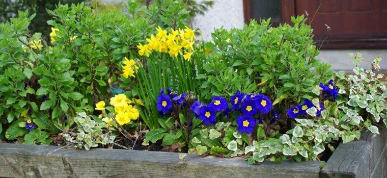 bonito macetero flores primavera jardín