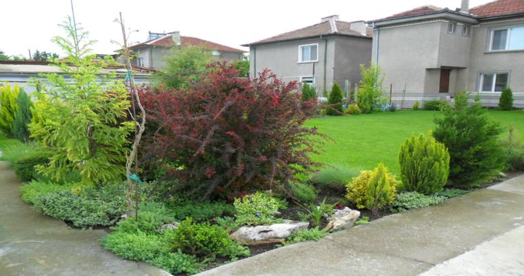 bonito jardin esquina arbustos