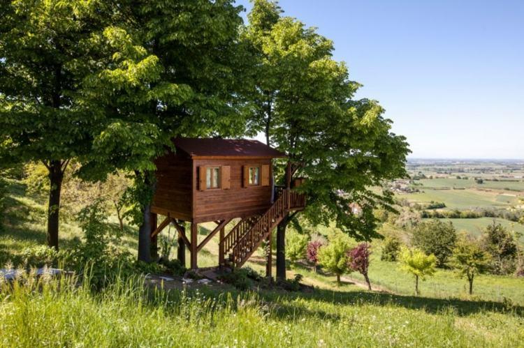 cabaña arbol adultos hermosas vistas