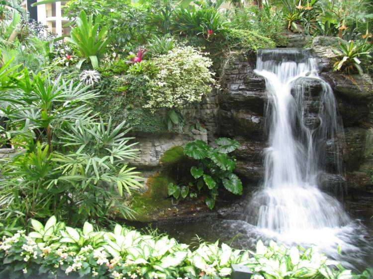 caida agua jardin plantas piedras ideas