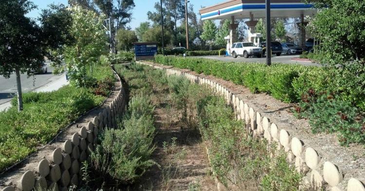camino jardin bloques verdura cemento
