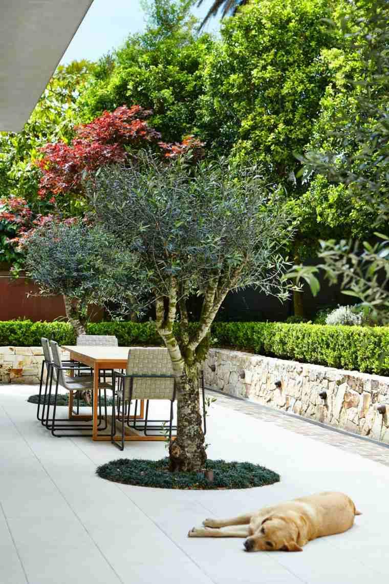 Dise o de jardines 50 ideas frescas y modernas for Diseno jardines