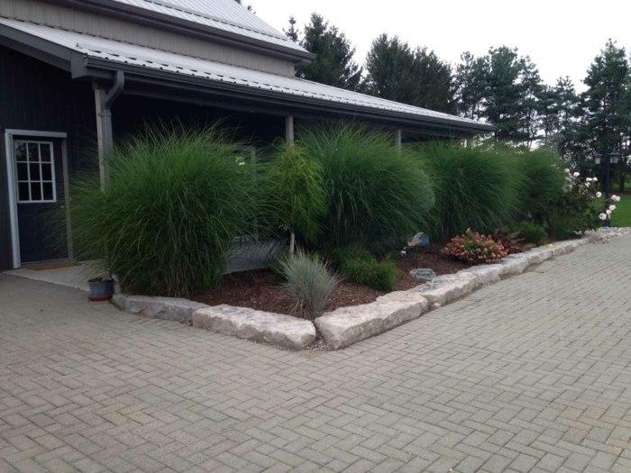 casa modernas estilos jardineras verdes