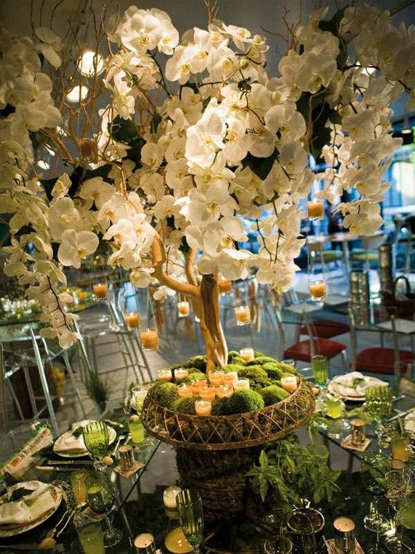 centros mesa bodas orquideas moho ideas