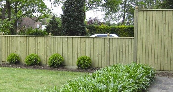 cerramientos jardin hierbas autos plantas