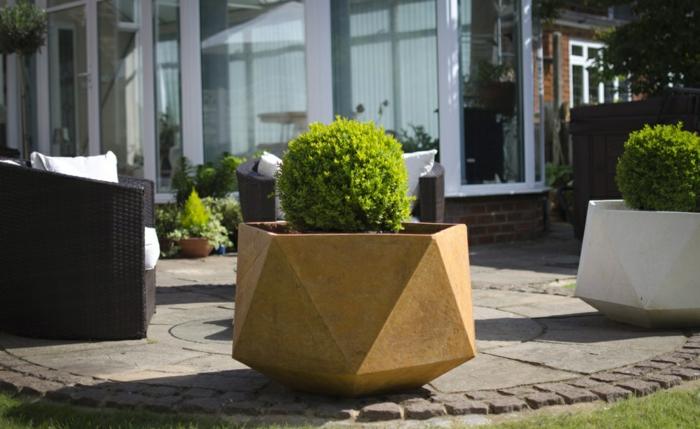 cojines plantas salas externos siluetas geometricas
