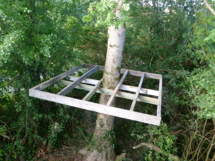 colocar estructura casa madera arbol