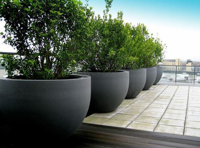 jardineras ideas verdes salones grises cristales