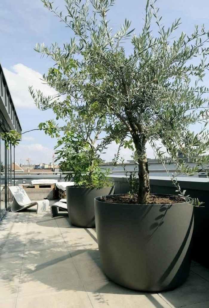 jardineras ideas estilos verdes salones salas