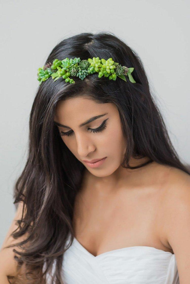 corona diadema plantas suculentas vivas