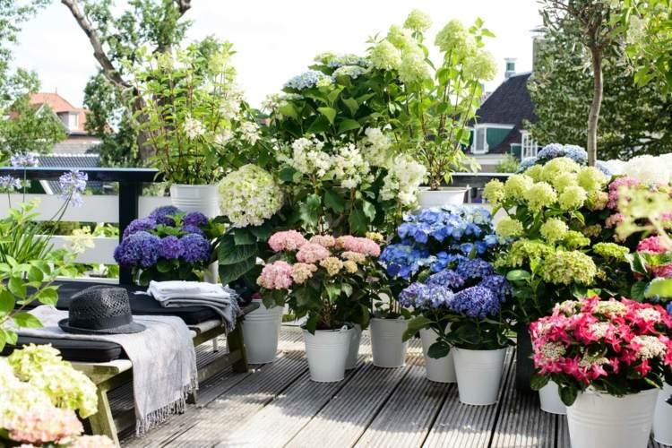 cubos blancos para las flores balcon ideas