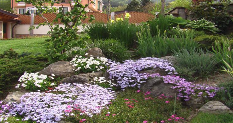 decoración rocalla flores colores
