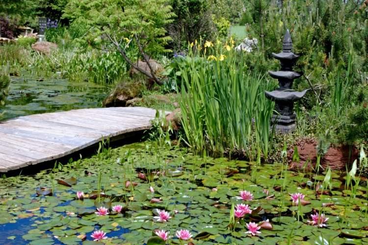 decoracion de jardines diseno asiatico estanque plantas agua ideas