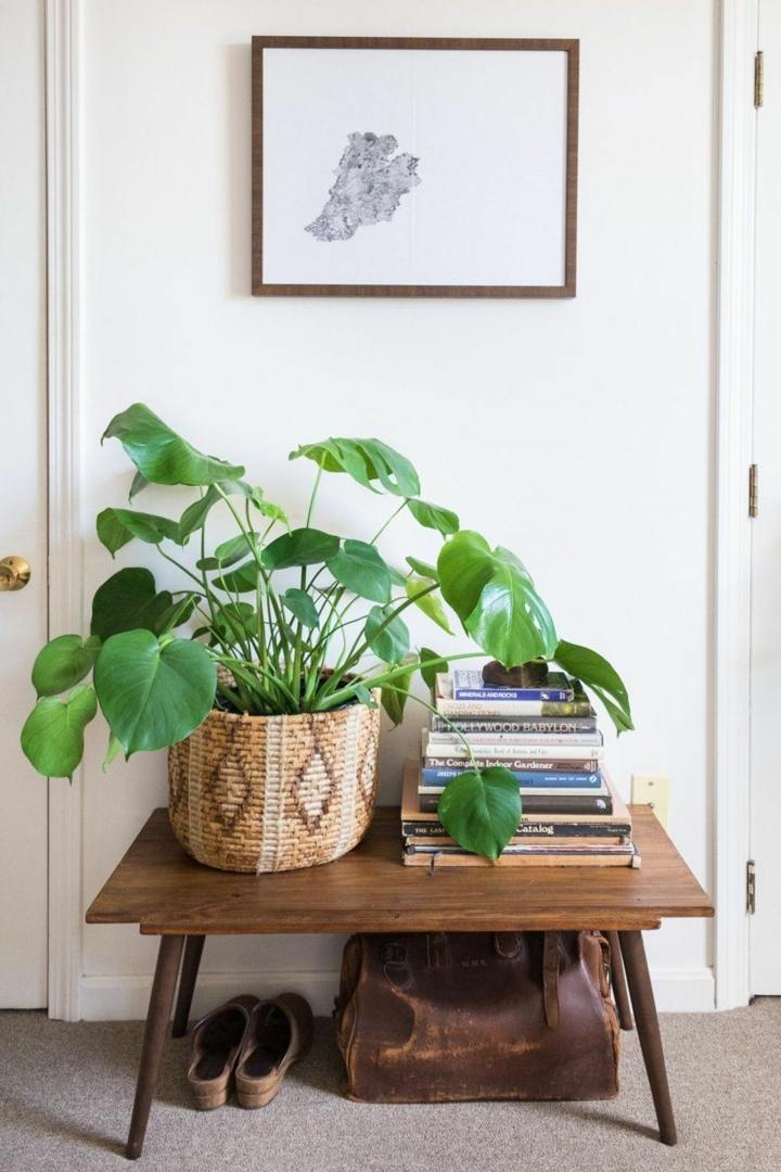 decoracion detalles vegetales canastas peuqña