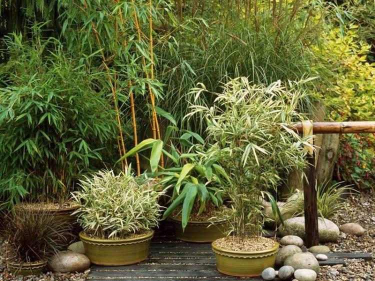 decoracion jardin diseno asiatico japones bambu ideas