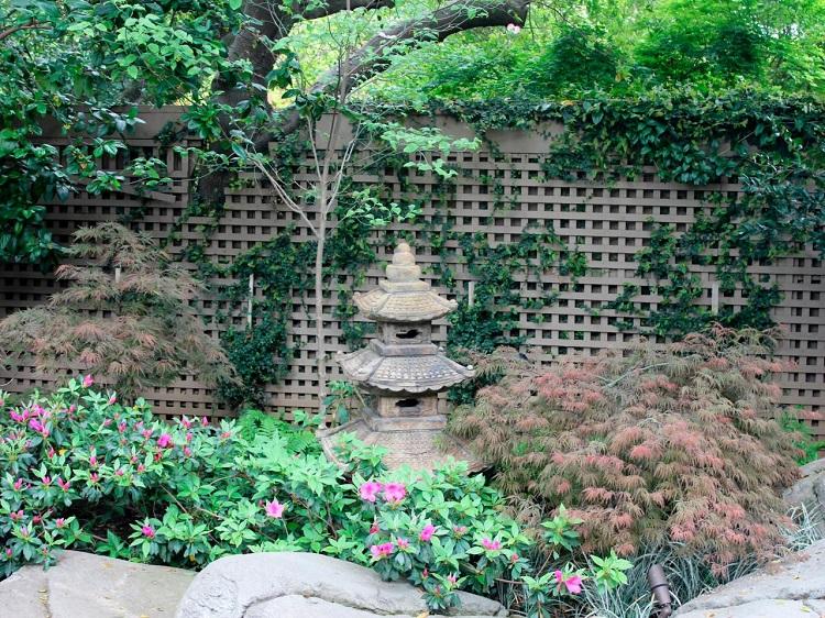 decoracion jardin diseno asiatico plantas figura ideas