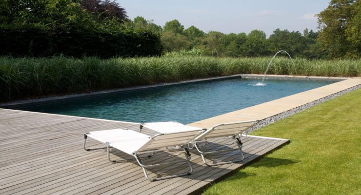 natural pools filters plants
