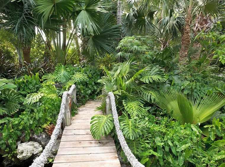 diseño jardines muchas plantas