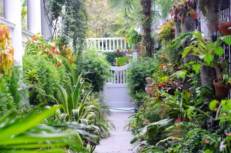 entrada patio bonito flores